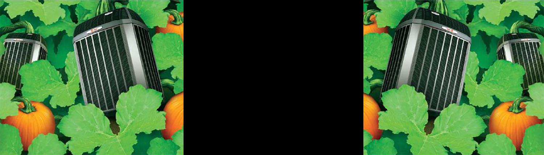 2015fall-img